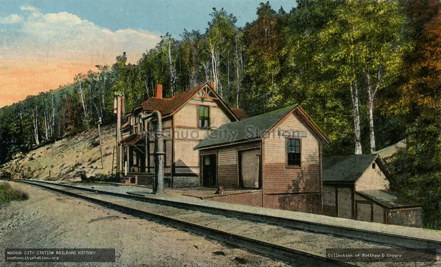 Postcard: Willey House Station, Crawford Notch, N.H.